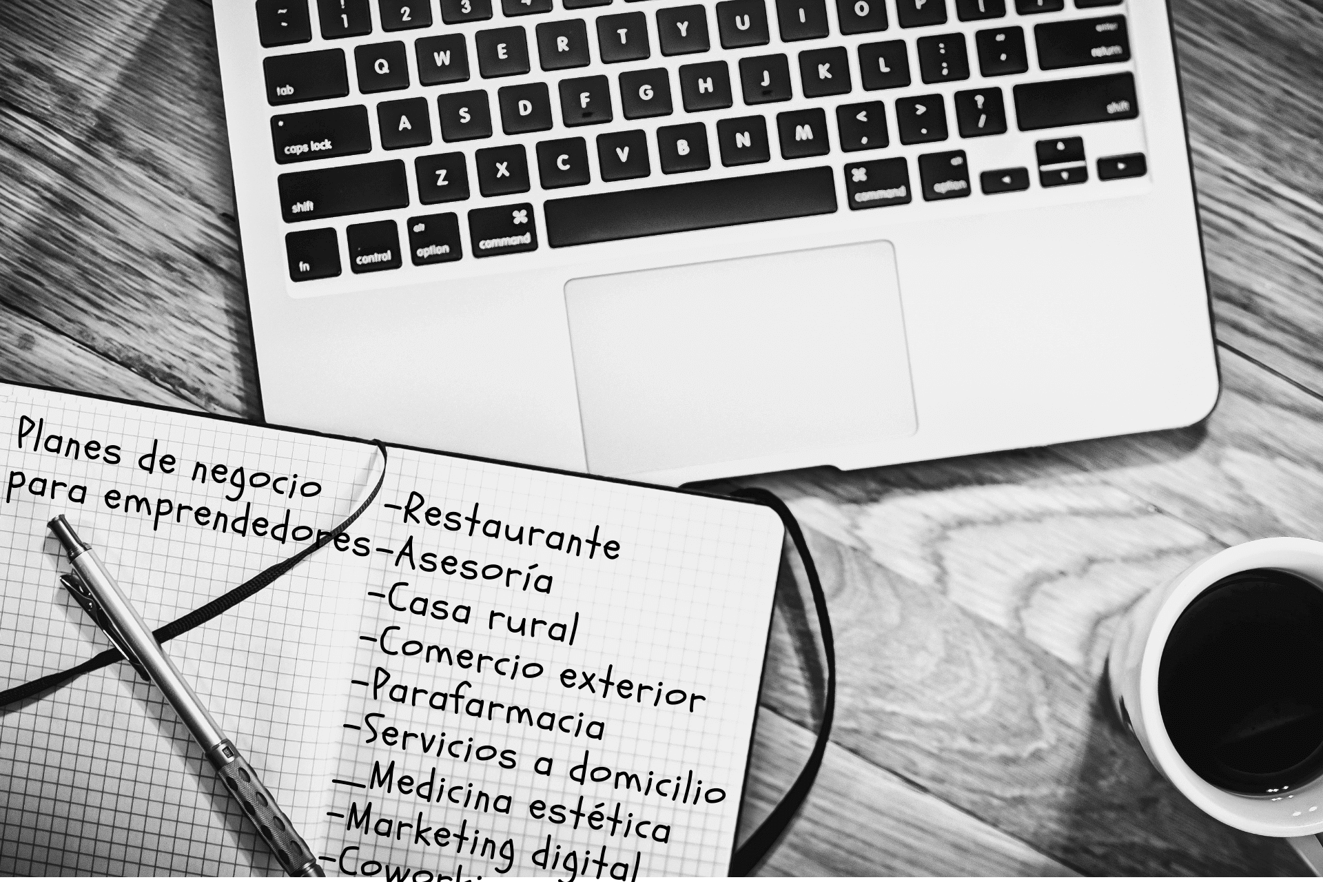 Artículos planes de negocio de diferentes sectores